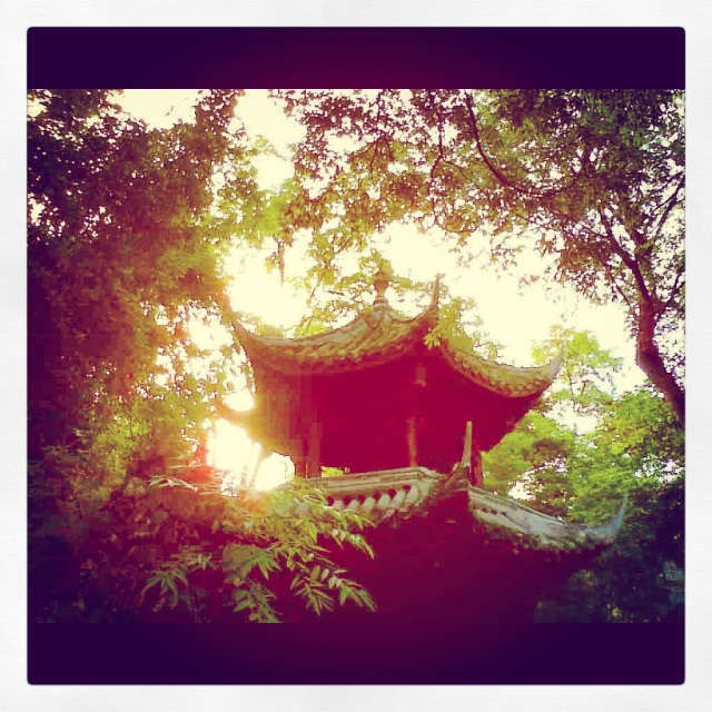 The sun sets it's haze of warmth upon the pagoda and surrounding leaves