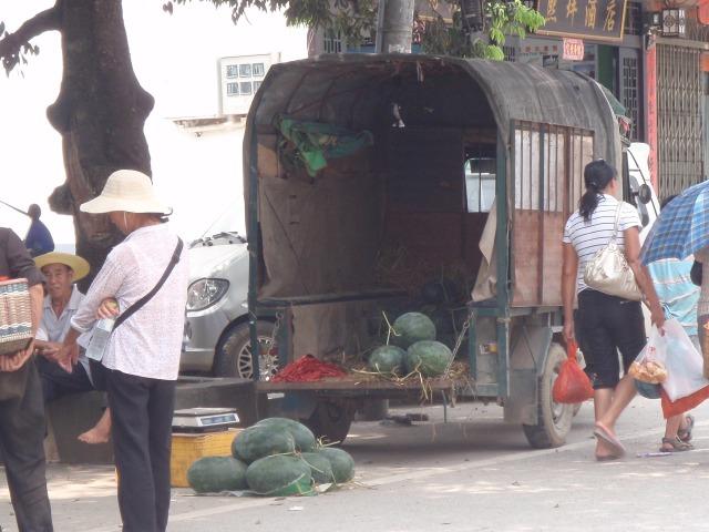 非常大的西瓜,fēicháng dà de xīguā, very large watermelons...
