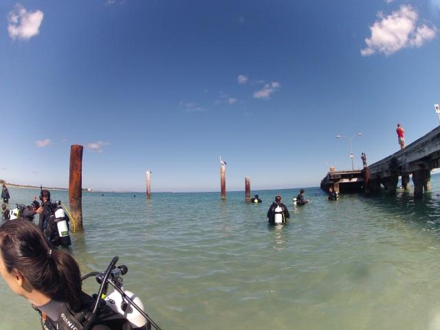 Nice day for a dive...天气不错。。。tiānqì bùcuò