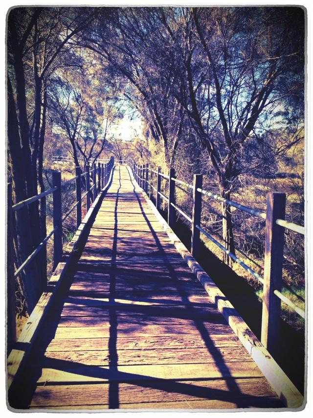 有一座长的桥, yǒu yí zuò cháng de qiáo